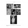 Folia_Archaeologica_29_Page_022